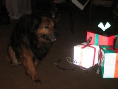 Max with Christmas Presents