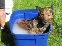 Max in a bucket!