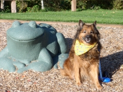 Max in Hawthorne Park