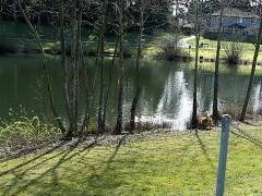 Boundary Park Lake